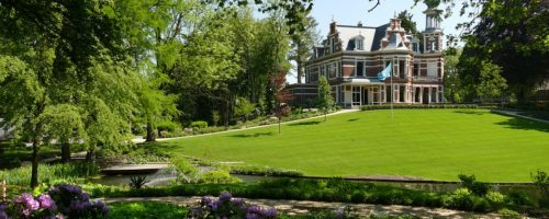 Devis entretien jardin
